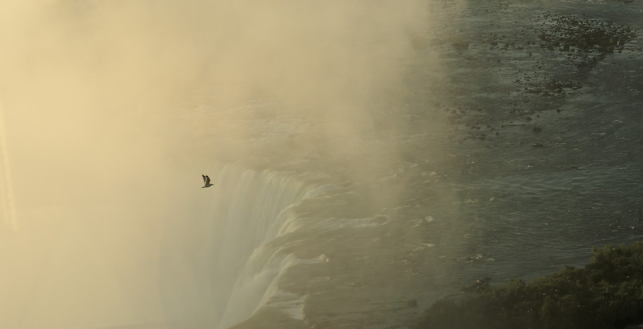 2010-06-16 - Niagara - 202