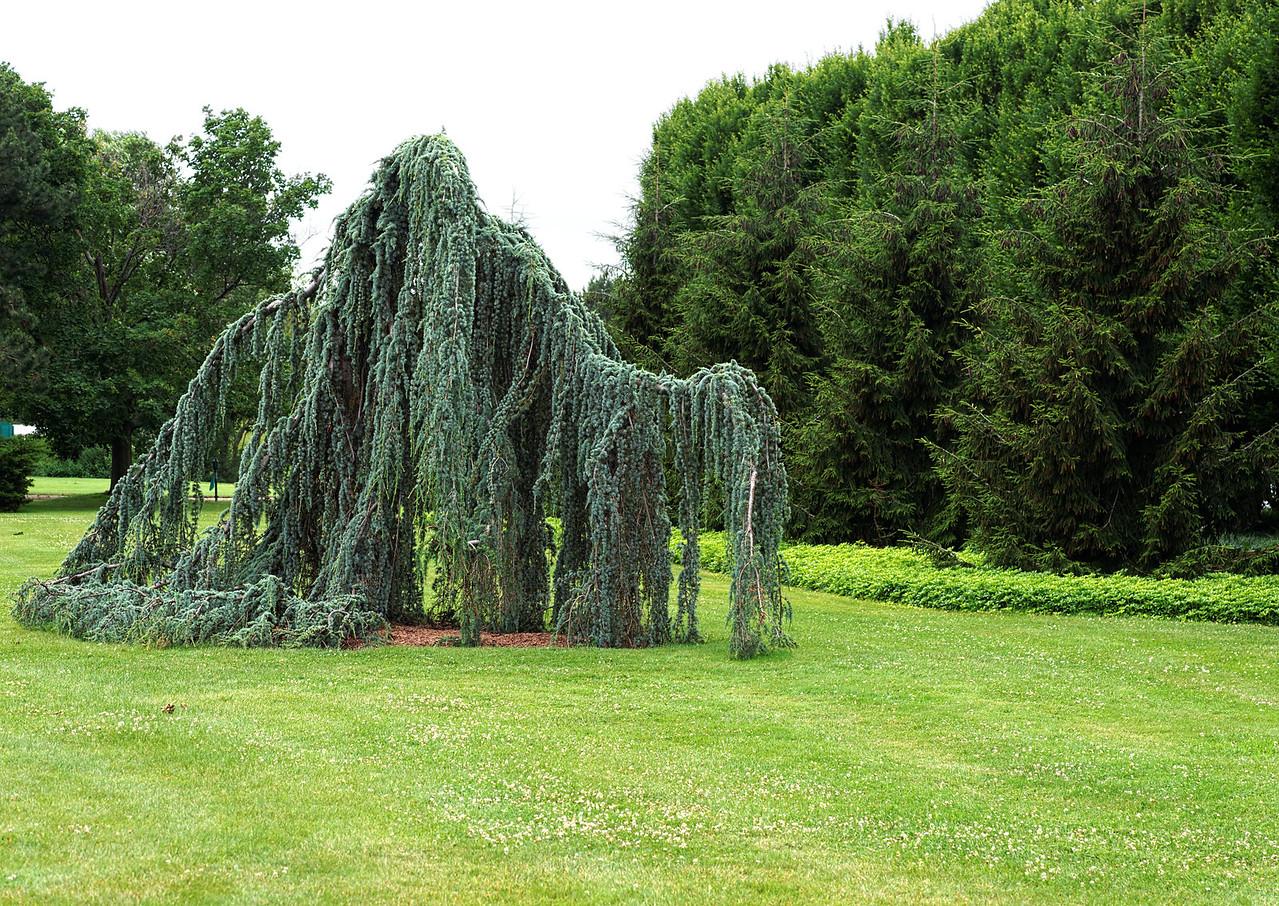 2011-06-29 - Niagara Botanical Gardens - 044