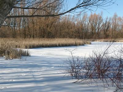 Feb 8 - 14 - Frozen Lake