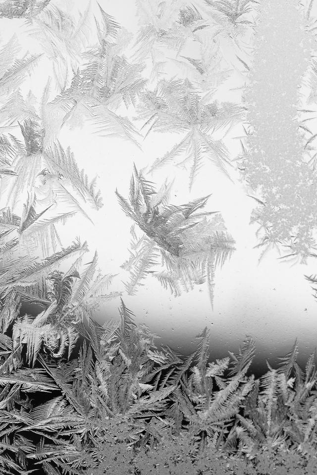 Ice on Window - 04