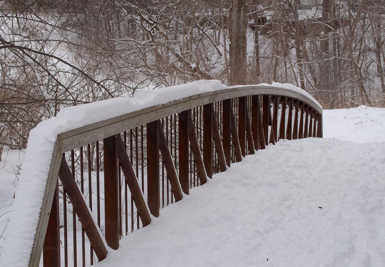 Pomona Park Mid January - 32