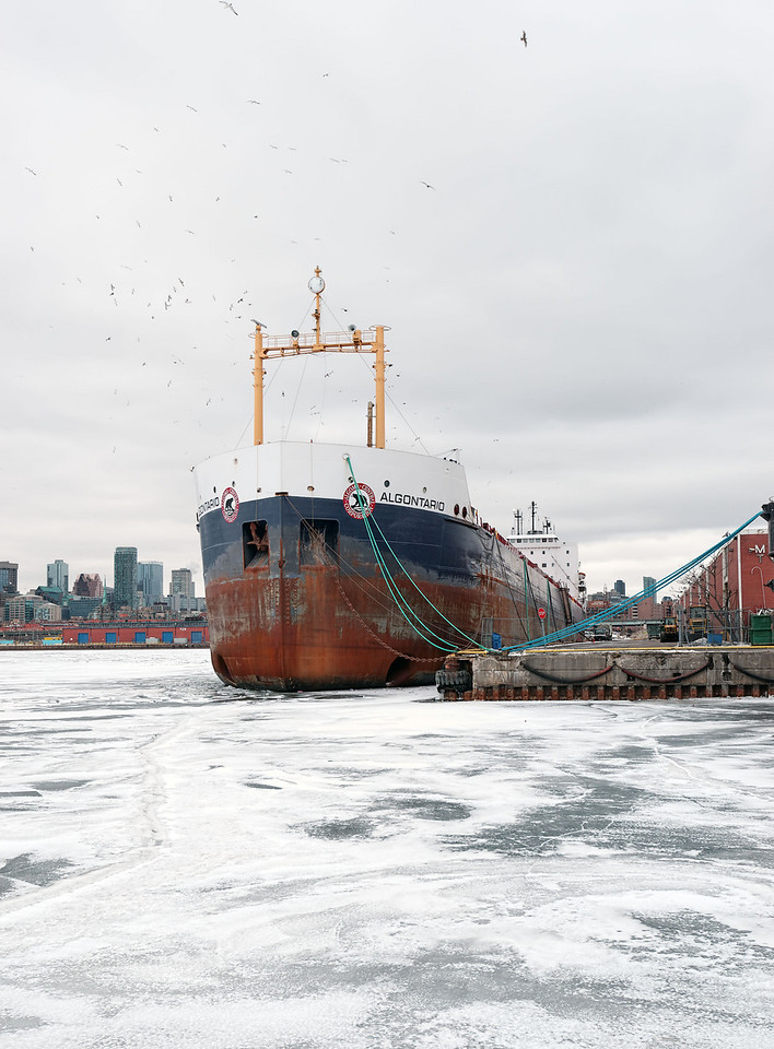 2010-02-14 - Docks - 19