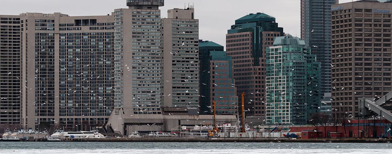 2010-02-14 - Docks - 09