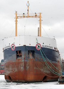 2010-02-14 - Docks - 20