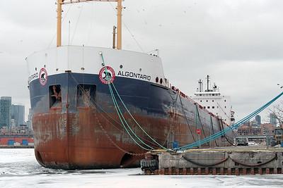 2010-02-14 - Docks - 21