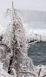 2010-12-27 - Niagara - 42