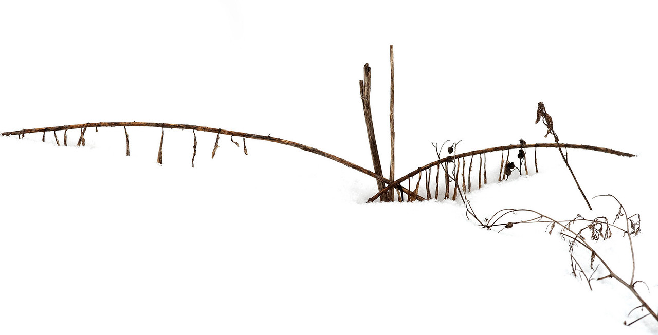 2011-02-26 - Pomona (2) - 16