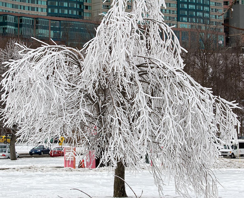 2010-12-27 - Niagara - 52