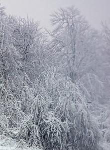 2010-12-20 - Niagara - 24C
