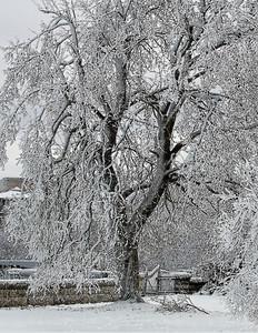 2010-12-27 - Niagara - 35C