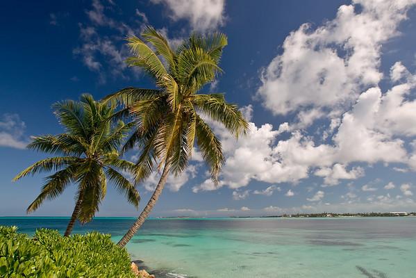 Bahamas February 2008