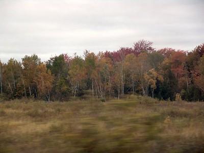 Train - Fall 02