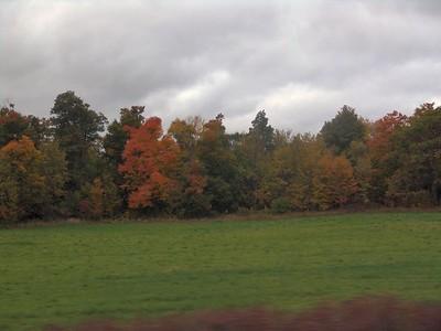 Train - Fall 13