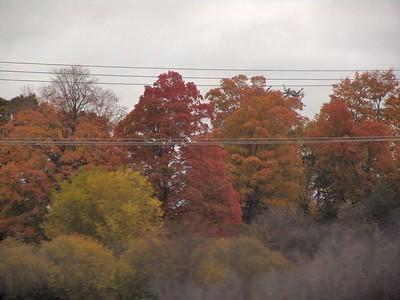 Train - Fall 08