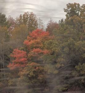 Train - Fall 09