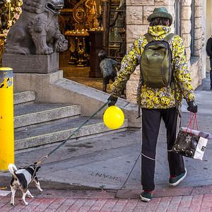 2014-01-03_San_Francisco_022