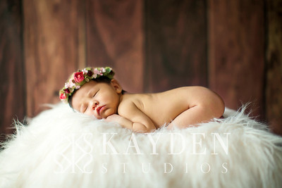 Kayden-Studios-Favorites-500