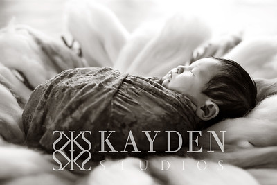 Kayden-Studios-Favorites-502