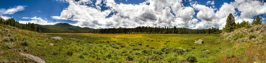 Really cool meadow on the west side of Hagerman pass. The sun finally came out.