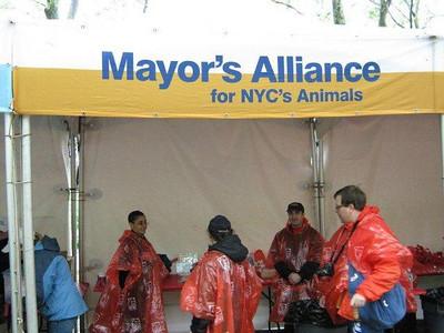 2010-04-25 - K9K Pet Cancer Awareness Walk