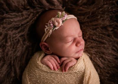 Penelope June {Posed Newborn}