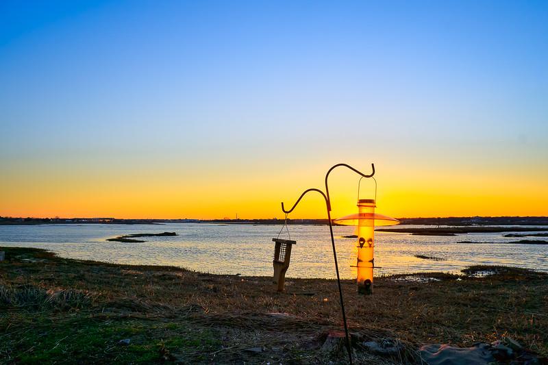 Sunset through the feeder at the Milford audubon coastal center