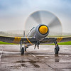 Hawker Sea Fury T20 WG655 GN 9 10 By David Stoddart