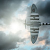 The perfect under-belly. #Spitfire FSH 3910 By David Stoddart