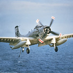 A-1-USN-Generic 0002 A Douglas A-1 Skyraider USN Cold War era attack aircraft landing on an aircraft carrier, official USN picture via Tailhook Col  produced by Cloud 9 Photography     DONEw ...