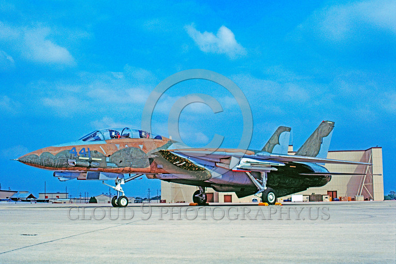 F-14USN-CAM 0006 A static Grumman F-14 Tomcat USN jet fighter 1986 water color camouflage military airplane picture by Carl E Porter