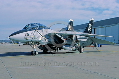 F-14USN-VF-103 0049 A static Grumman F-14 Tomcat USN 161417 VF-103 JOLLY ROGERS USS Dwight D Eisenhower NAS Oceana 1-1997 military airplane picture by Andrew Collins