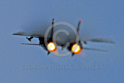 AB-F14USN 00027 Heat seeking missiles love to guide onto afterburners, military airplane picture by Peter J Mancus