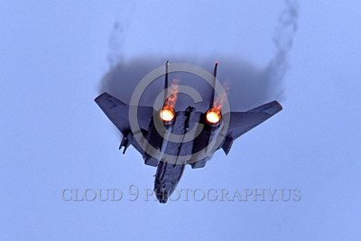 AB-F14USN 00028 A Grumman F-14 Tomcat USN jet fighter in afterburner military airplane picture by Peter J Mancus