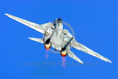 AB-F14USN 00002 A Grumman F-14 Tomcat USN jet fighter zooms up in afterburner military airplane picture by Peter J Mancus
