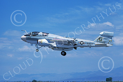 EA-6BUSN 00338 A landing Grumman EA-6B Prowler USN 159586 VAQ-138 YELLOWJACKETS USS Dwight D Eisenhower NAS Fallon 8-1978 military airplane picture by Michael Grove, Sr
