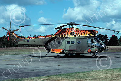 Puma 00007 A static Aerospatiale SA330 Puma British Royal Army helicopter picture 6-2001 by Wilfried Zetesche