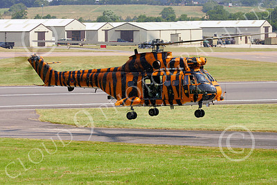 Puma 00006 A flying tiger striped Aerospatiale SA330 Puma British Royal Air Force helicopter picture by Paul Ridgway