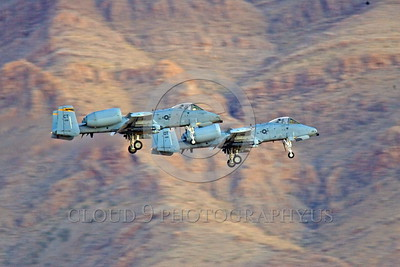 A-10ANG-CT 0012 Two Fairchild A-10 Thunderbolt II Connecticut Air National Guard land at Nellis AFB military airplane picture by Peter J Mancus