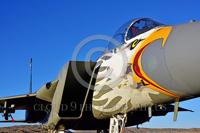EE-F-15ANG 0013 Close up of the eagle head nose art on a one-of-a-kind colorful paint scheme McDonnell Douglas F-15 Eagle air superiority jet fighter Oregon Air National Guard 79041 at Stead 2016 military airplane picture by Peter J  Mancus