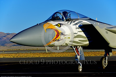 EE-F-15ANG 0020 Awesome nose art on a static colorful one-of-a-kind paint scheme McDonnell Douglas F-15 Eagle air superiority jet fighter Oregon Air National Guard 79041 at Stead for Reno Air Races 9-2016 military airplane picture by Peter J  Mancus