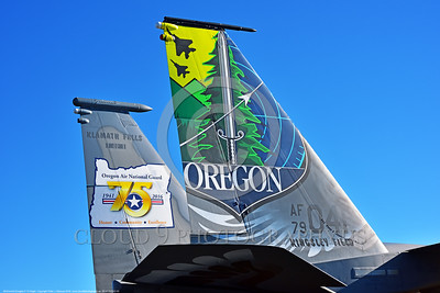 EE-F-15ANG 0005 Close up of the twin tails of a one-of-a-kind colorful paint scheme McDonnell Douglas F-15 Eagle air superiority jet fighter Oregon Air National Guard 79041 at Stead for Reno Air Races 2016 military airplane picture by Peter J  Mancus