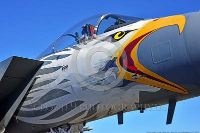 EE-F-15ANG 0024 Awesome nose art on a static colorful one-of-a-kind paint scheme McDonnell Douglas F-15 Eagle air superiority jet fighter Oregon Air National Guard 79041 at Stead for Reno Air Races 9-2016 military airplane picture by Peter J  Mancus