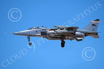 SEPECAT Jaguar 00036 A landing SEPECAT Jaguar attack jet British RAF XZ360 8-1999, airplane picture, by Michael Grove, Sr