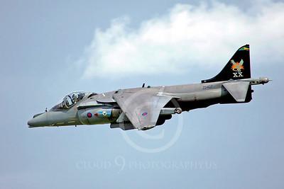 BAE Harrier 00022 BAE Harrier British RAF ZD407 by Paul Ridgway