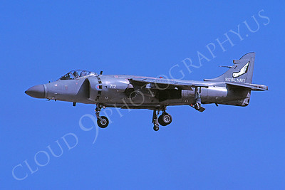 BAE Sea Harrier FA2 00004 BAE Sea Harrier FA2 British Royal Navy ZH808 August 2002 by Stephen W D Wolf