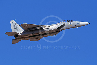 F-15Forg 00022 A flying two seat McDonnell Douglas F-15 Eagle Israeli Air Force 733 9-2002 airplane picture, by Michael Grove, Sr