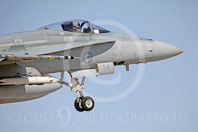 CUNMJ 00132 McDonnell Douglas F-18 Hornet RAAF by Peter J Mancus