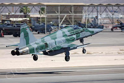 F-5FORG 00008 Northrop F-5E Freedom Fighter Brazilian Air Force 4865 Nellis AFB by Peter J Mancus