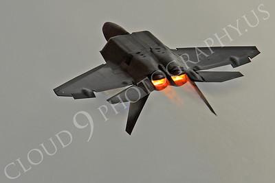 AB-F-22 00040 Lockheed Martin F-22 Raptor USAF by Peter J Mancus