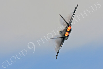 AB-F-22 00024 Lockheed Martin F-22 Raptor USAF 04068 by Peter J Mancus
